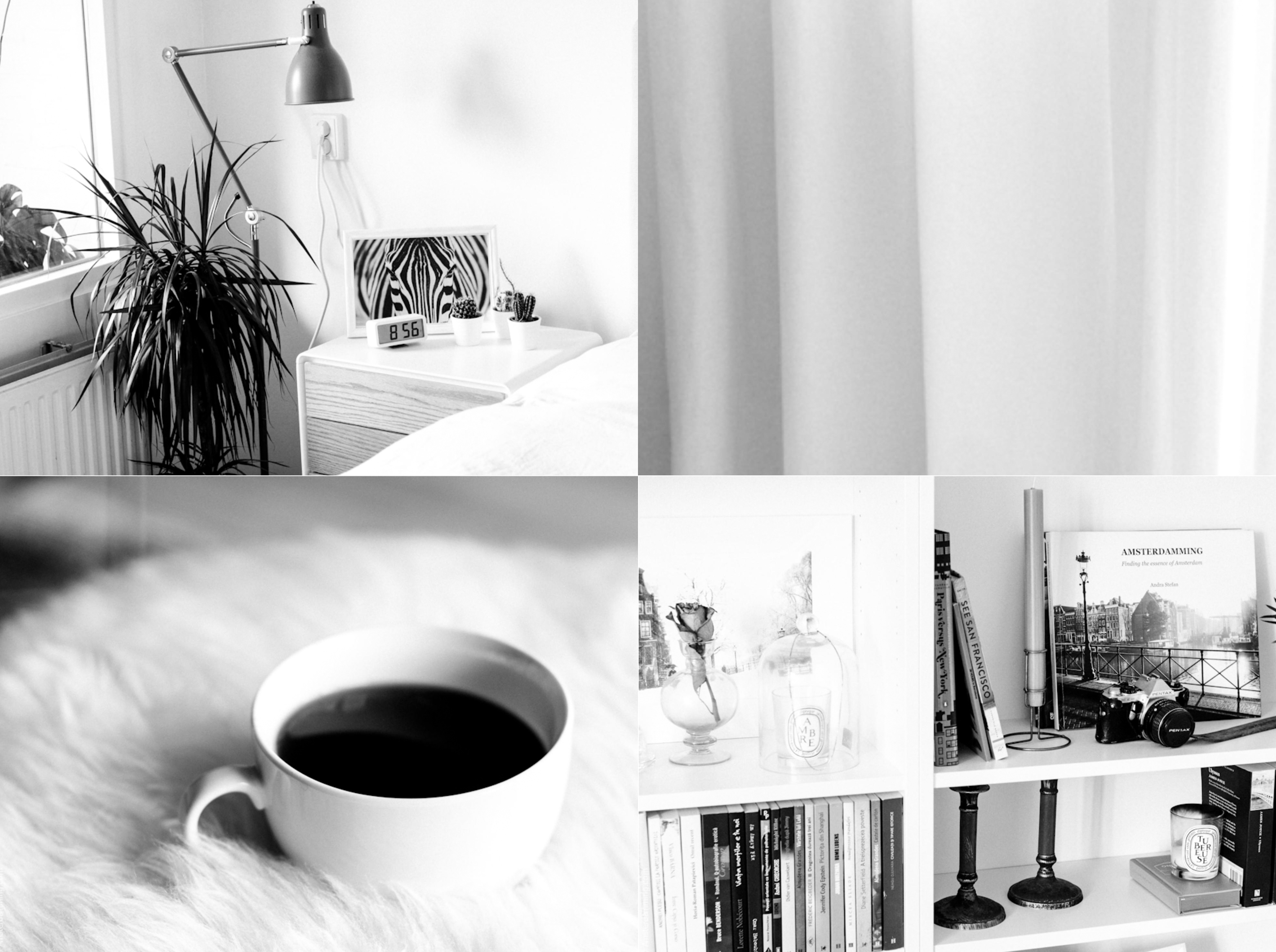 2016 JUL Amsterdam Home B&W collage-1