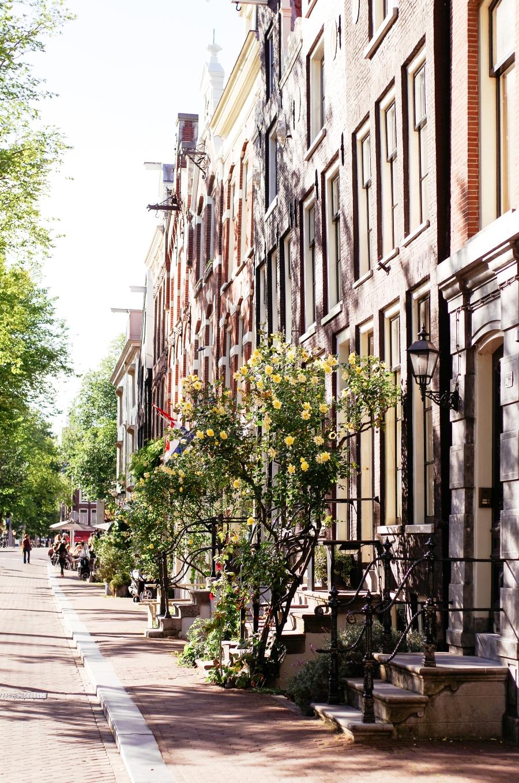 2016 JUL Amsterdam Frankendael and Kerkstraat-21